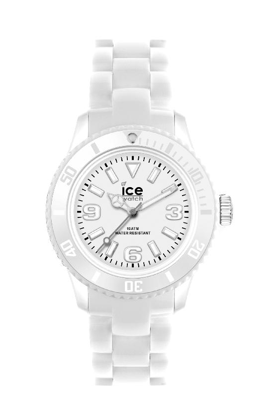 Image ICE WATCH
